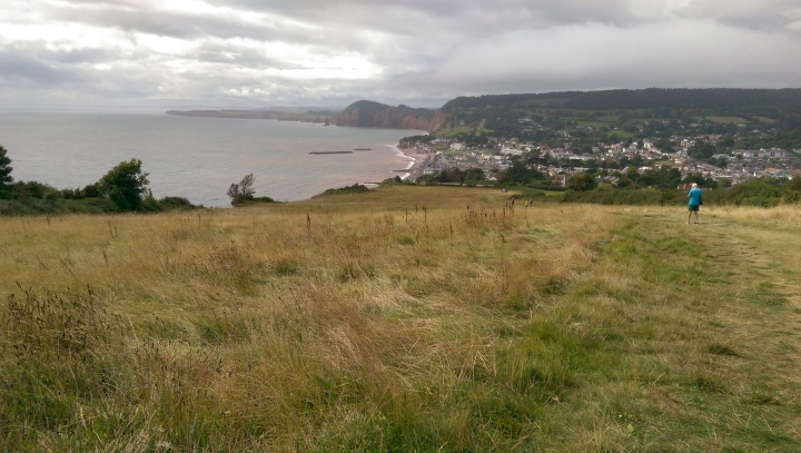 ex10 sidmouth from hill top