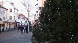 ex10-sidmouth-christmas-tree-lights