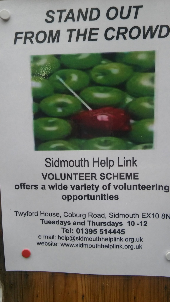 ex10-sidmouth-help-link