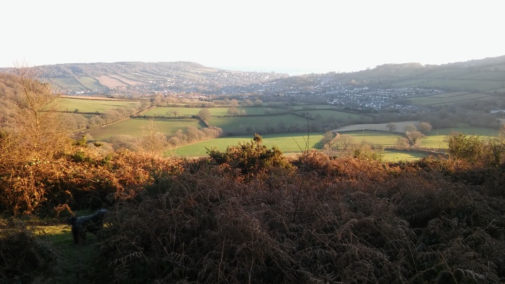 sidmouth-from-beacon-hill