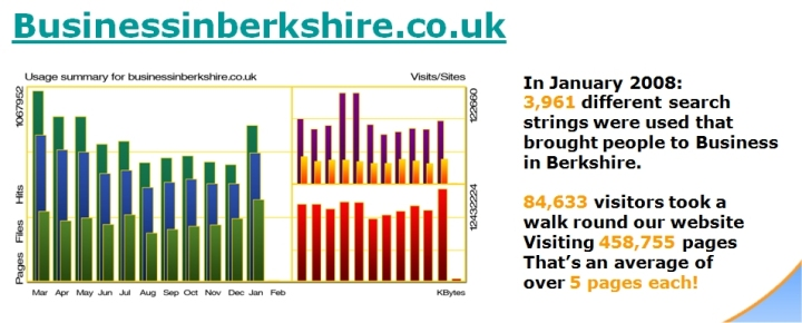 business-in-berkshire-stats-2008