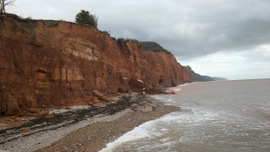 much-loved-shed-comes-over-the-cliff-sidmouth-1-33