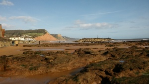 ex10-low-tide-sidmouth