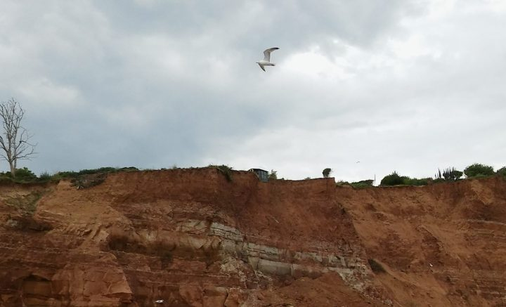 shed on cliff edge sidmouth