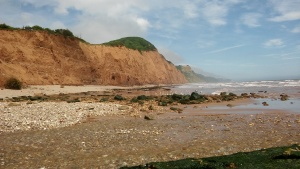 sidmouth cliffs from dog beach